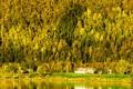 Картинка море, осень, лес, деревья, закат, дом, склон