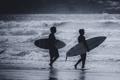 Картинка волны, пляж, солнце, отражение, серфер, серфинг, доски для серфинга