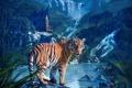 Картинка взгляд, природа, тигр, водопад, хищник