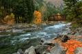 Картинка осень, лес, горы, мост, река
