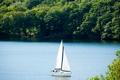 Картинка лес, лето, деревья, река, лодка, яхта, парус