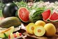 Картинка лето, арбузы, дольки, дыни