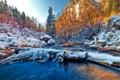 Картинка зима, лес, небо, снег, деревья, горы, река