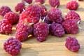Картинка berries, малина, ягоды, raspberry, fresh