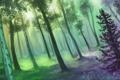 Картинка зелень, лес, солнце, цветы, арт, нарисованный пейзаж