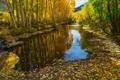 Картинка деревья, горы, осень, озеро