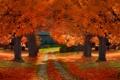 Картинка осень, листья, деревья, путь, сарай, солнечные тени
