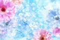 Картинка цветы, блеск, лепестки