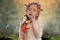 Картинка лес, трава, бабочки, рисунок, поляна, разноцветные, цветы