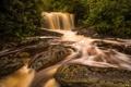 Картинка природа, река, водопад, джунгли