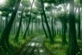 Картинка лес, свет, deep forest