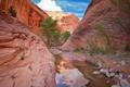Картинка небо, вода, облака, камни, дерево, скалы, каньон