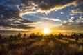 Картинка небо, облака, пейзаж, закат, природа