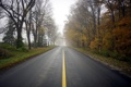 Картинка дорога, пейзаж, туман