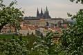 Картинка Czech Republic, весна, здания, Prague, цветение, Чехия, Прага