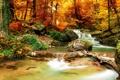 Картинка осень, лес, деревья, пейзаж, природа, река, водопад