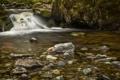 Картинка ручей, лес, река, порог, камни