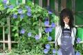 Картинка цветы, забор, черные волосы, bakemonogatari