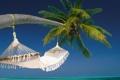 Картинка пляж, пальма, океан, остров, гамак