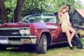Картинка деревья, дом, Chevrolet, шевроле, красная, 1964, Impala