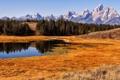 Картинка поле, пейзаж, горы