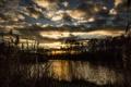 Картинка облака, деревья, закат, озеро, камыш