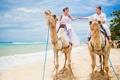 Картинка море, пляж, прогулка, верблюды, влюбленная пара