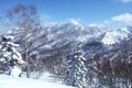 Картинка зима, небо, снег, деревья, пейзаж, горы, склон