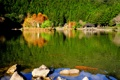 Картинка лес, природа, озеро, парк, камни, беседка