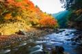 Картинка осень, лес, небо, река, камни