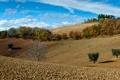 Картинка поле, осень, небо, деревья, дома, холм, Италия
