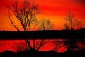Картинка небо, деревья, закат, природа, река, зарево