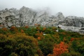 Картинка Горы, Туман, Осень, Скалы, Деревья, Гора, Лес