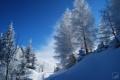 Картинка зима, лес, снег, природа
