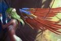 Картинка провода, спина, крылья, руки, арт, профиль, киборг