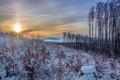 Картинка природа, закат, зима