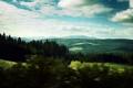 Картинка лес, небо, облака, деревья, пейзаж, холмы, пейзажи