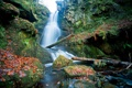 Картинка листья, камни, водопад, Шотландия, брёвна