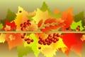 Картинка осень, листья, коллаж, насекомое