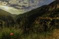 Картинка облака, скалы, Provence, маки, ущелье, лучи солнца, трава