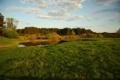 Картинка зелень, лес, лето, небо, облака, пейзаж, природа