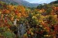 Картинка осень, лес, небо, деревья, горы, скалы