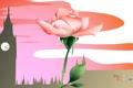 Картинка цветок, город, путешествия, роза, башня, Великобритания, туризм