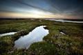 Картинка поле, небо, пейзаж, ночь, природа