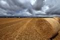 Картинка облака, небо, даль, поле, пора, конец лета, рулоны