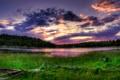 Картинка лес, небо, трава, облака, озеро, утро