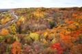 Картинка дорога, осень, лес, деревья, река, рельсы, Канада