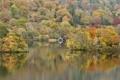 Картинка осень, деревья, озеро, дом, холмы