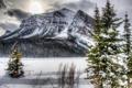 Картинка зима, лес, снег, деревья, горы, тучи, скалы
