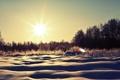 Картинка зима, солнце, снег, деревья, природа, сугробы